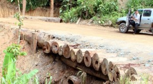 Creative engineering and skillful construction of roads are key to protecting natural areas