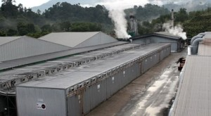 The 60-acre site features a co-generation turbine which utilizes wood waste from the sawmill and factory to provide all the power for the office and manufactuing facilities and steam for the dry kilns