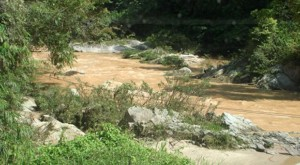 Tropical rains cause natural silting and erosion. Our job is to minimize or eliminate damage in water catchment areas